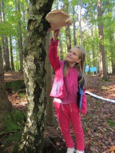 Otroci se v gozdu spremenijo v odlične opazovalce in raziskovalce (foto Lučka Drganc)